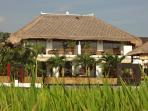 view from next rice fields on rooms 1 - 2 - 3 - 4