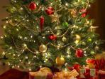 CHRISTMAS....  Mid November / December, a decorated Christmas tree will welcome your arrival.