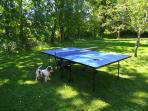Outdoor games like table tennis or badminton available