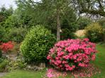 Beautiful garden area at Wee Orchard Lodge Lochearnhead Perthshire Scotland