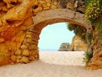 Explore the Local Beaches!
