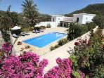 Garden of approximately 1.500m2 with olive trees, almond and fig trees, small wine-yards