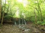 Waterfall in the private woods
