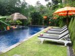 The huge luxurious pool and sun lounges surrounded by lush 'floodlit' trees provide ample