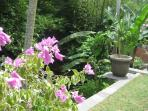 Enjoy the plentiful and colourful colour in the gardens, with beauganvillia, and frangipani shrubs.