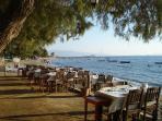 A fish-restaurant on the beach