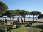 Promenade le long de la plage principale d'Argeles