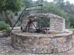 fully working water wheel in the garden but not for drinking