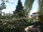 Porche and garden