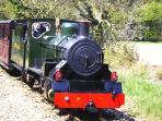 Bure Valley Steam Train at Wroxham