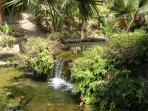 Lush tropical gardens and fish ponds