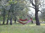 Hammock for a regenerating break at Ancora del Chianti Eco - Friendly B&B in Tuscany