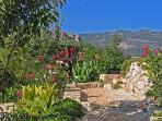 5,000 sq metre Mediterranean garden