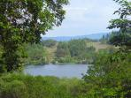 Llyn Mair - beautiful lake and woodland walks here and only a short drive away