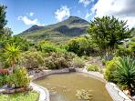House at Longbeach, Noordhoek, Cape Town - Gardens with pond