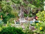 House at Longbeach, Noordhoek, Cape Town - Gardens