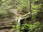 Ash Cave waterfall, just 12 minutes from your cabin