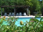 The pool with gazebo and sun loungers