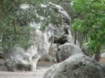 Le rocher de l'Eléphant