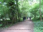 The Peregrine Path, for walking & cycling, follows the River Wye from Symonds Yat to Monmouth.