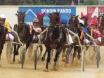 A visit to the trotting races in Saint Luis is a great way to spend a Menorcan evening