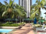palm trees at miami green