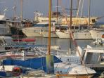 Fishing boats at the nearby Latchi Marina. Enjoy the days catch at one of the local fish tavernas