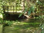 Manantial del río Ebrón