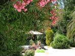 Lush exotic private gardens