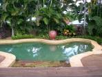Gorgeous pool and deck in tropical garden. Spacious light well equipped home