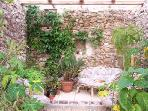 Tranquil orangery in converted wine cellar, great place for a cool glass of wine on a hot day