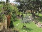 Pine Bay gardens