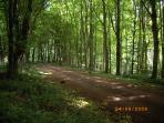 Walk down the drive to Dunino Church and Druids stone