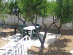 vista del giardino dell'appartamento al primo piano di c.Mottura