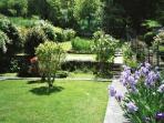 garden view in spring