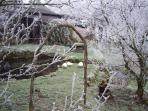 Rimed fruit trees and willow arch outside bunkhouse in winter.