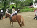 Ashtree rhorse riding  stables 5 minutes drive from Willowfarmhouse,Holiday Cottage Donegal