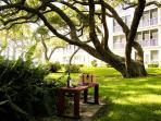 Garden at Bay Tree
