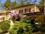Enjoy a peaceful garden and a sunny terrace.