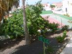 Balcony view of gardens and tennis court
