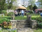 Tower tea gardens