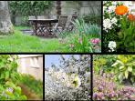 Un jardin partagé avec les propriétaires