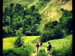 Trekking nella campagna umbra con partenza da Casa Tonda