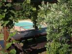 angolo piscina dal gazebo
