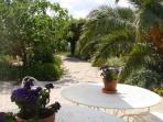Impression of the garden of guesthouse Aux Merveilleux in Grimaud