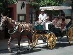 Take a horse drawn carriage around the town