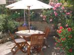 Rear patio garden in Spring