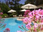 Swimming pool from Aux Merveilleux - Grimaud near St Tropez