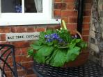 A veg basket offered in season, during stay at Nordham Cottages as well as a welcome tea on arrival.