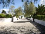 Pretty cobbled streets around Casa Romantica